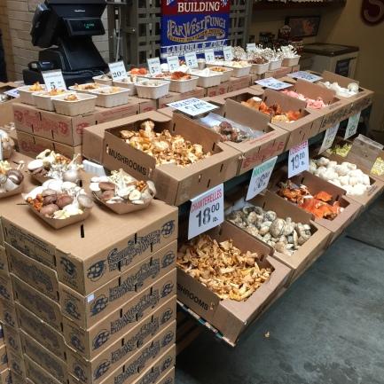 Mushrooms at Far West